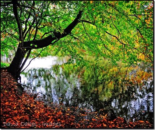 Rain-Lake-2