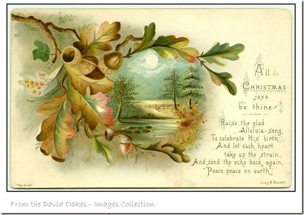 Oak-Leaves-for-Christmas