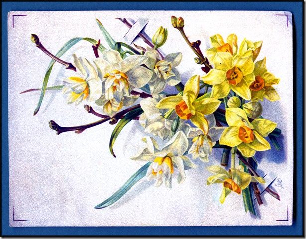 Easter-Flowers092
