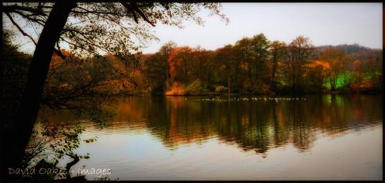 Lake-Glow