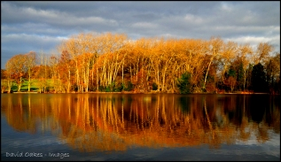 15 Lake Dawn (2)