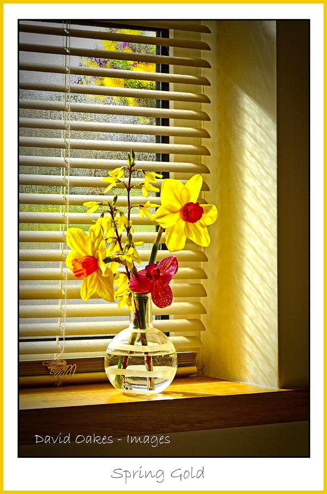 Spring-Gold-tt