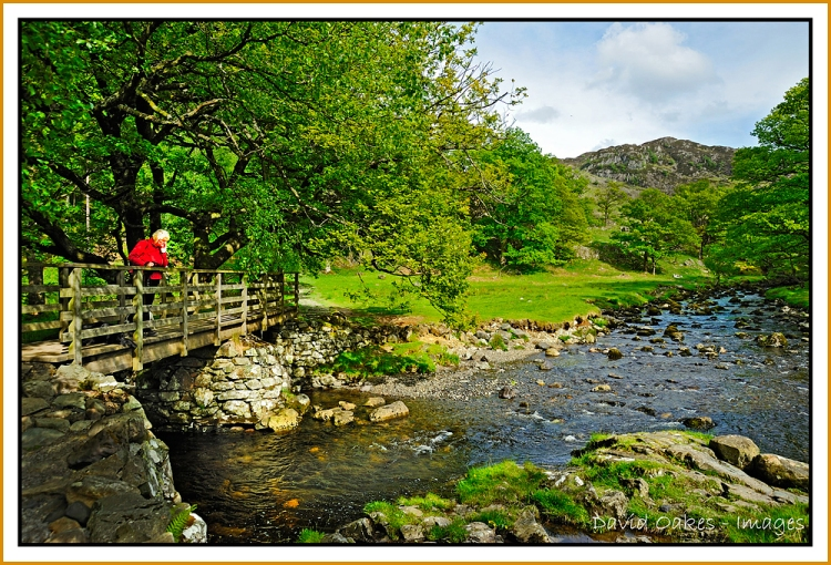 Cumbria-11--_0314
