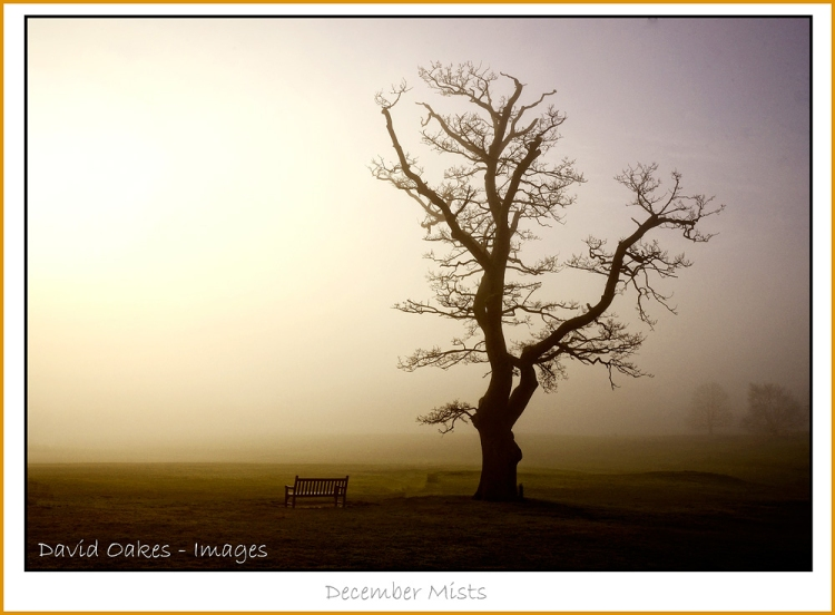 Dawn-and-December-Mists