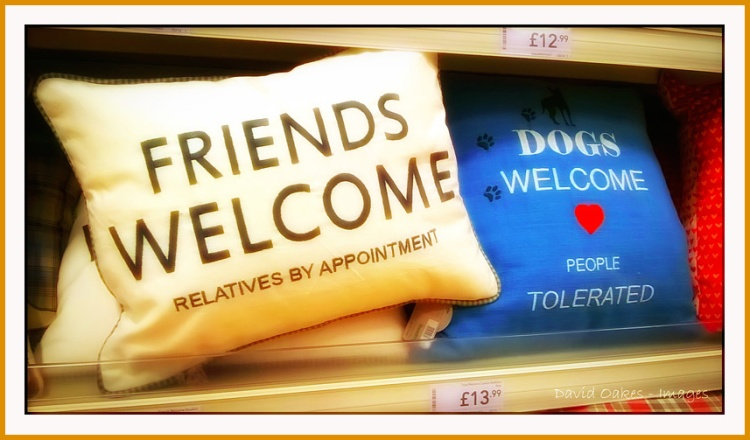 Friends-Welcome-2