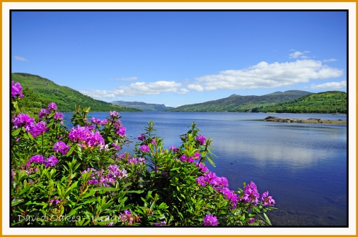 LOCH-KATRINE,-The-Trossachs-0079