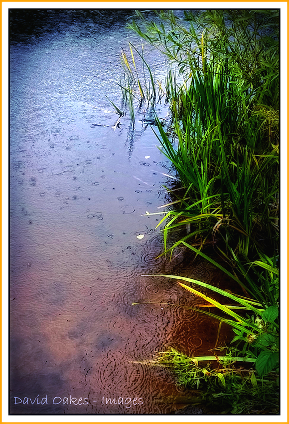 wet-day-gg