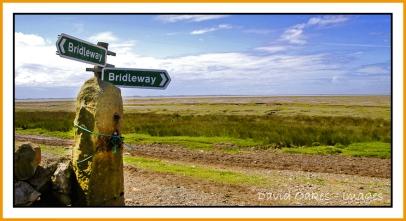 sunderland-point-and-heysham-june-0070