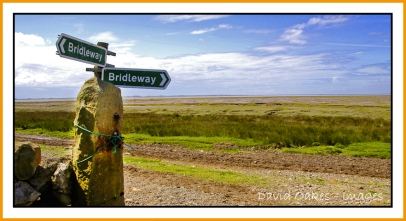 sunderland-point-and-heysham-june-0070
