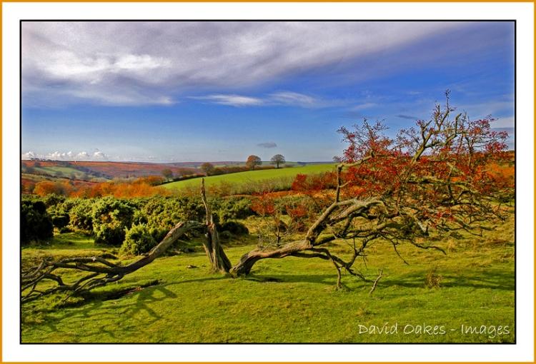 spires-cross-winsford-hill-exmoor