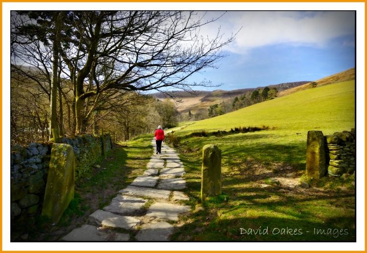 _a-well-trodden-path