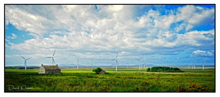 Wind-farm-in-the-Flows