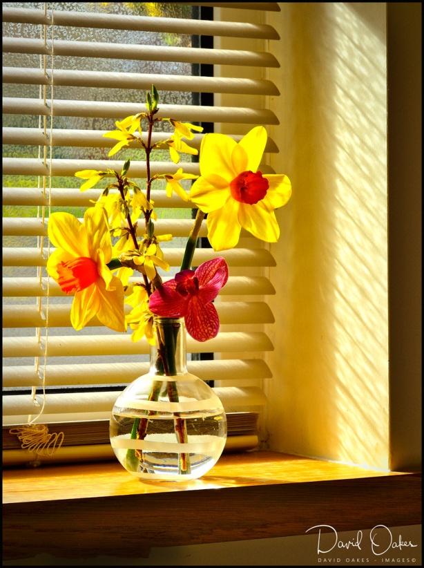 Spring-Gold