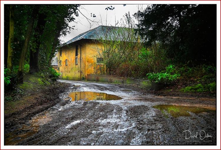 Wet-and-Muddy