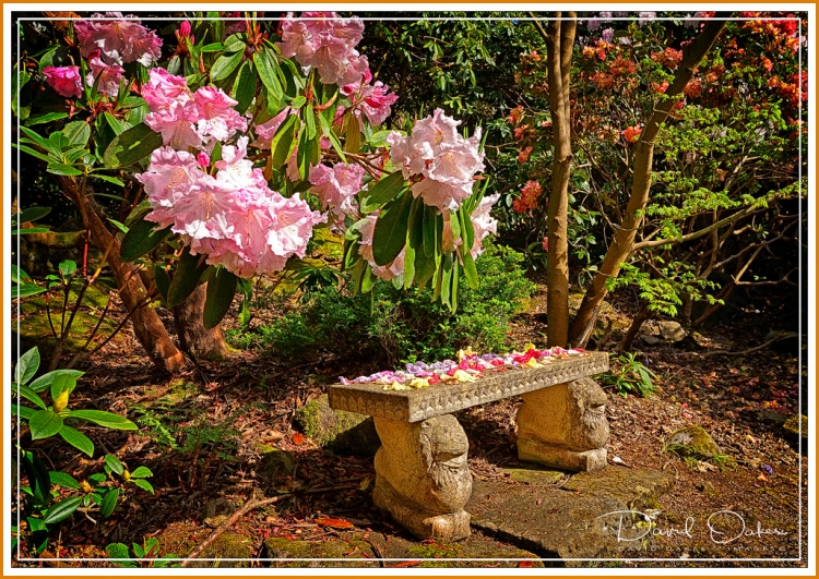 Lea-Gardens--04240