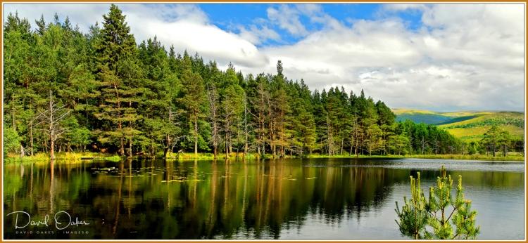 Uath-Lochans,-Farleitter,-Glen-Feshie,-Cairngorms,-Scotland 2-