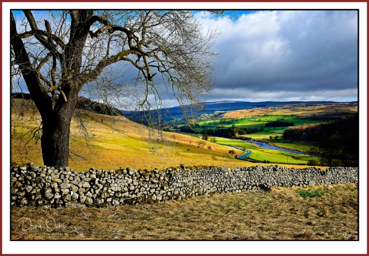 Yorkshire-2010--_0180sm.jpg