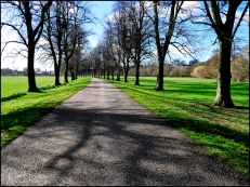 Beech-Drive-Chester-Green