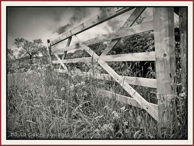 Farm gate.jpg