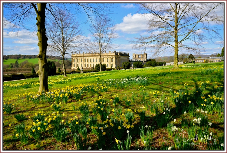 -March-Chatsworth