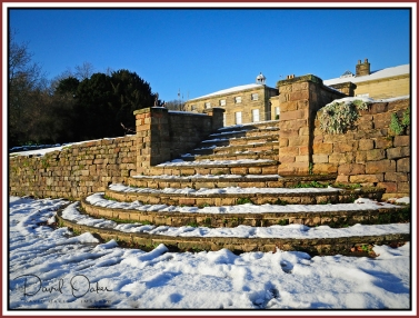 Steps Snow