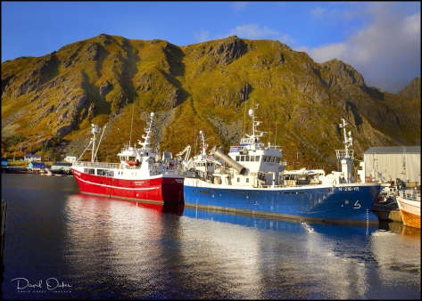 LEKNES,-Lofoten-Islands-N15_00008