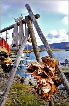LEKNES,-Lofoten-Islands-N15_00030