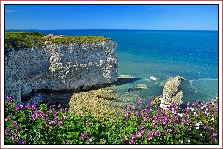 Yorkshire-Coast
