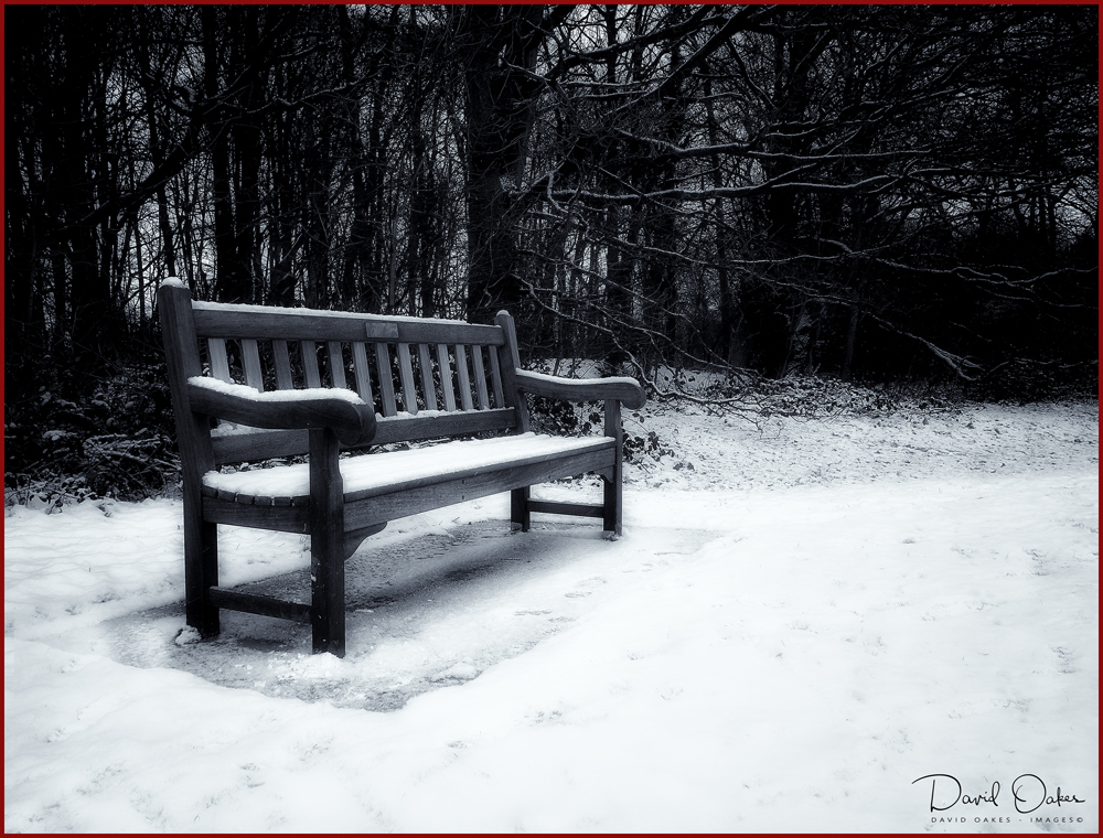 Bench-in-Snow