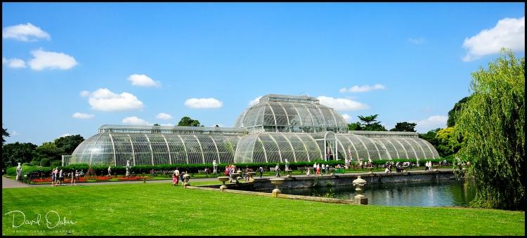 Kew-21.6