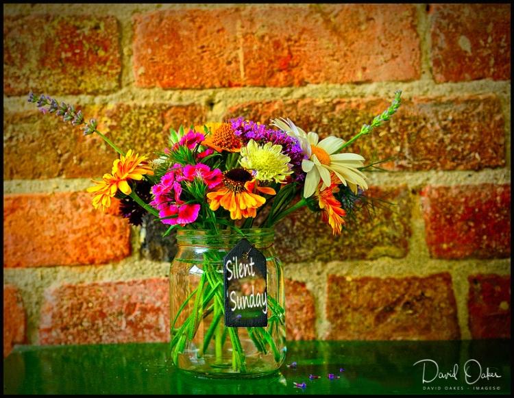 Flowers-from-a-Graden