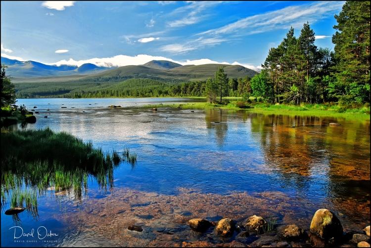 42-Loch-Morlich,-Glenmore-Forest-Park,-Cairngorm,-Scotland-0368