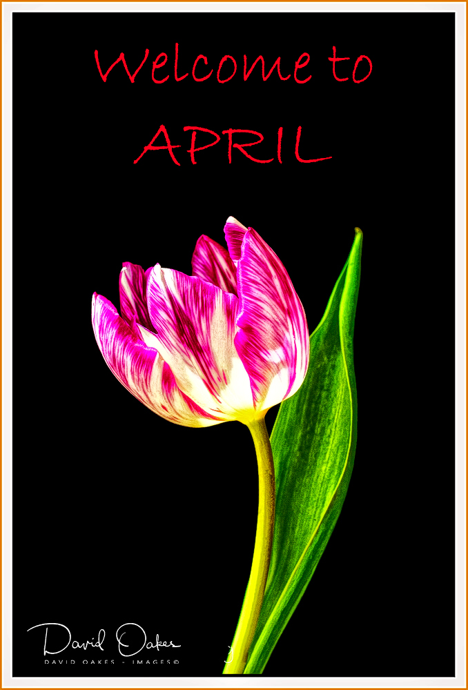 Welcome to April
