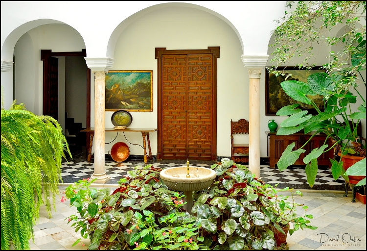 A-Cool-Courtyard,-Seville