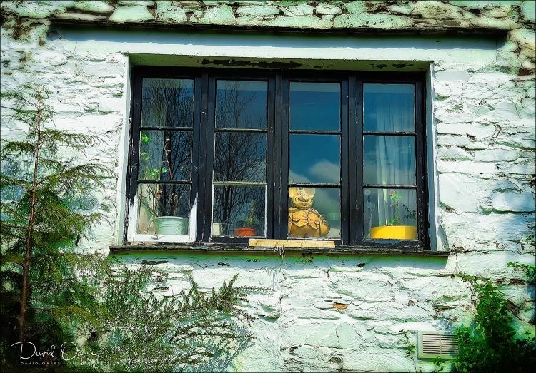 Pigglet-in-Window