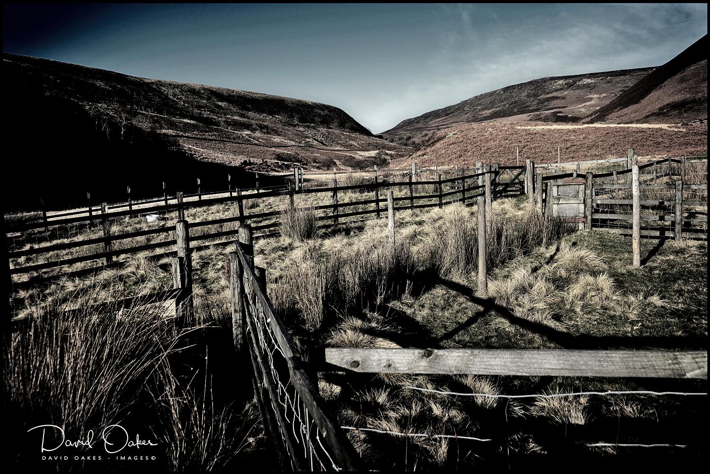 Upper Derwent Valley, Derbyshire